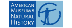 Epic Data Recovery Labs provided Data Recovery services for American_Museum_of_Natural_History
